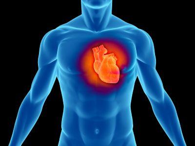 infarto-proteggere-cuore-attivita-fisica