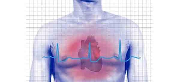 Malattie cardiovascolari avere un cuore sano bald mountain science - Gemelli diversi foggia ...