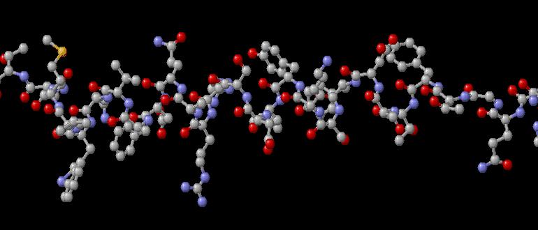 Glucagon-e1422193734132-770x330-min