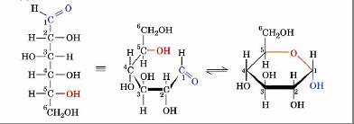 Nel glucosio è il gruppo -OH del carbonio C5 che reagisce con l'ossigeno carbonilico. Nel glucosio questo è in posizione C1 (gruppo aldeidico) per cui la reazione genera un anello a 6 atomi.