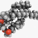 Relazione sulla prova di estrazione del dna - Gemelli diversi foggia ...